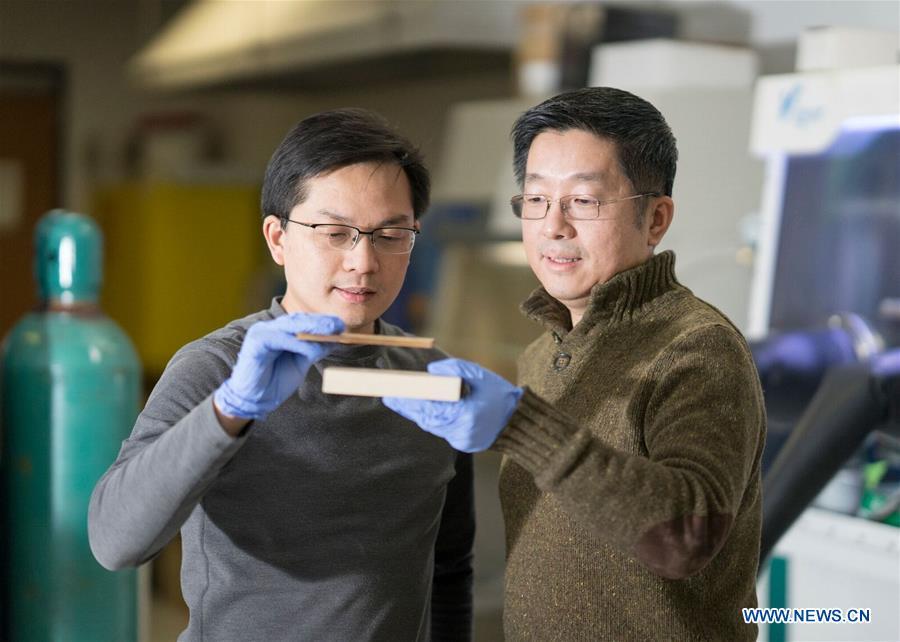 Αποτέλεσμα εικόνας για SUPER WOOD that could replace steel