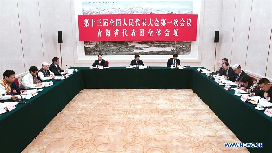 Deputies from Qinghai Province attend plenary meeting