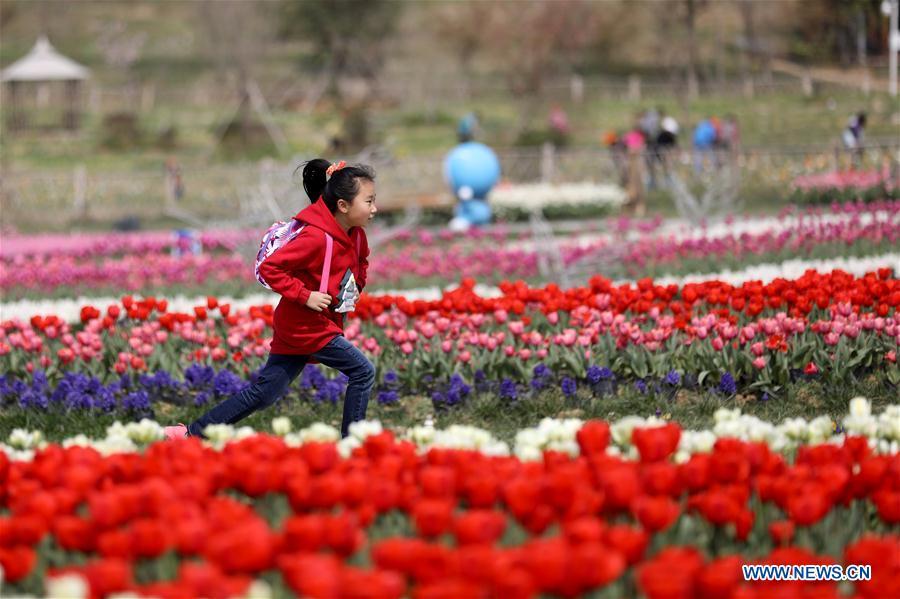 # CHINA-ZHEJIANG-SPRING-SCENERY-CHILDREN(CN)
