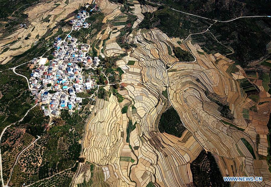 CHINA-GUANGXI-AGRICULTURE-WATERMELON-FIELD-LANDSCAPE (CN)