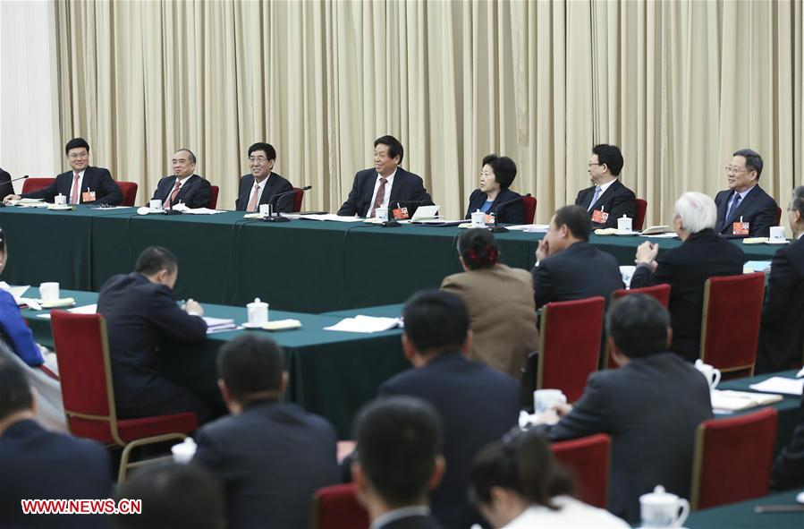(TWO SESSIONS)CHINA-BEIJING-LI ZHANSHU-NPC-PANEL DISCUSSION (CN)