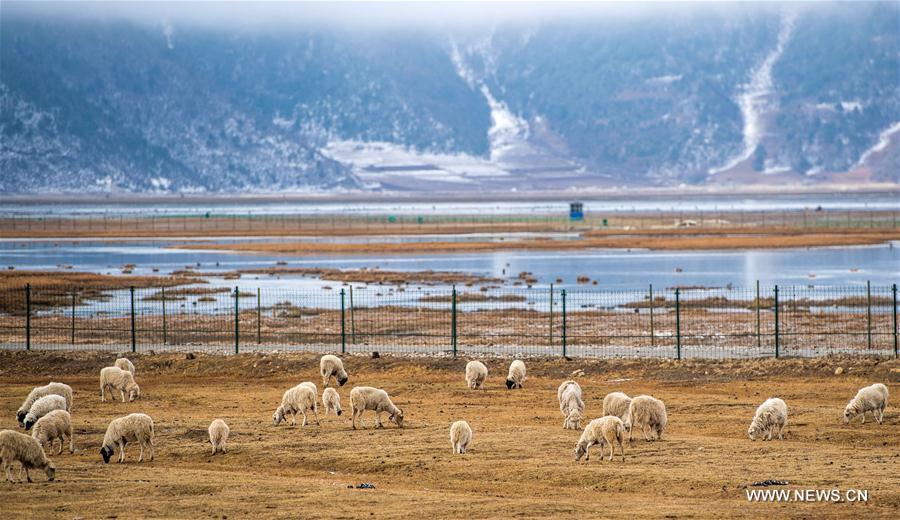 Scenery of Diqing Tibetan Autonomous Prefecture in China's Yunnan