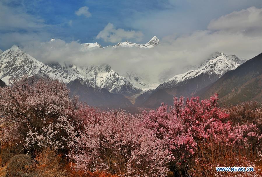#CHINA-TIBET-SCENERY (CN)