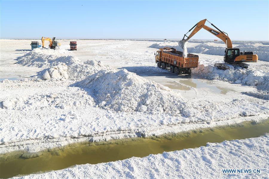 #CHINA-XINJIANG-SALT HARVEST (CN)