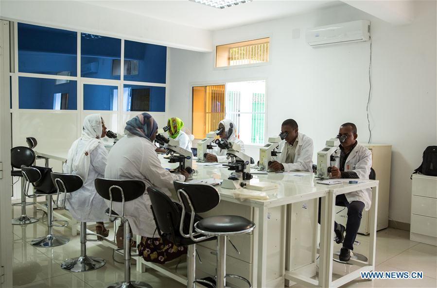 Xinhua Headlines: Hunting down malaria in Comoros -- another China-Africa story
