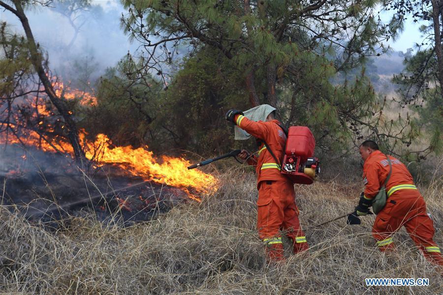 #CHINA-YUNNAN-DALI-FOREST FIRE(CN*)