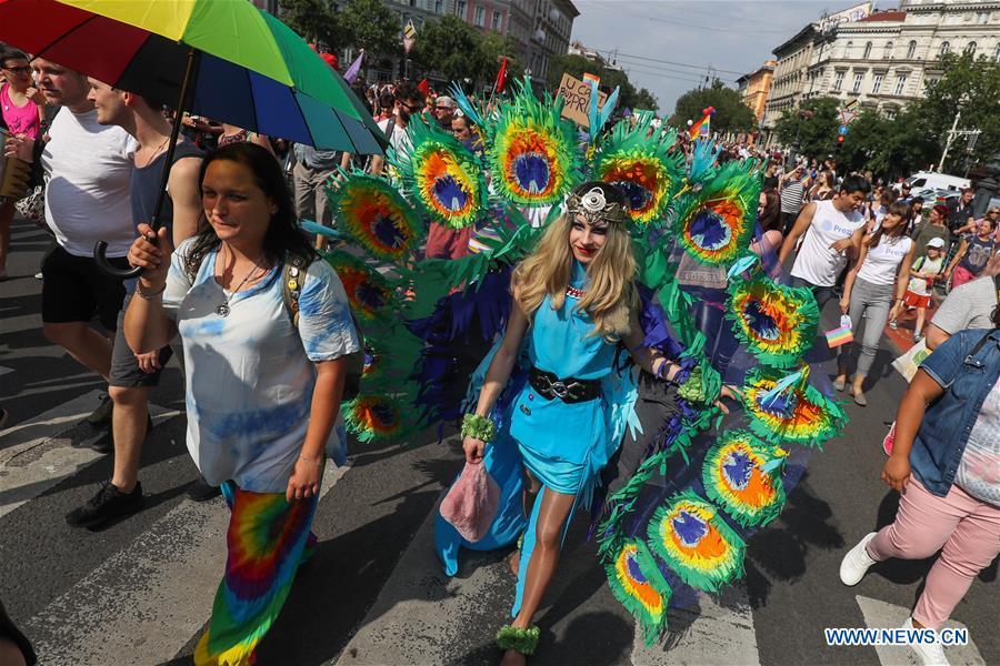 Naples florida gay bar