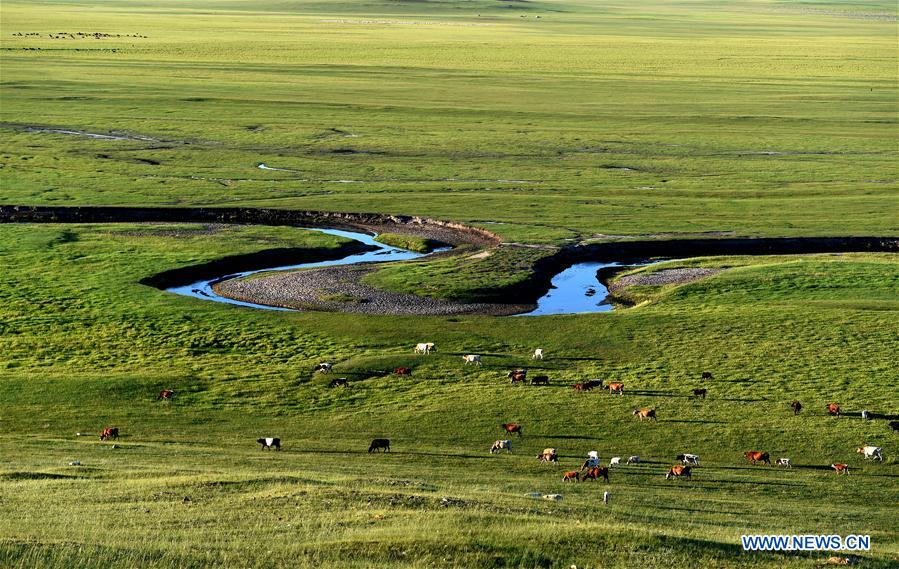CHINA-INNER MONGOLIA-XILIN GOL-SCENERY (CN)