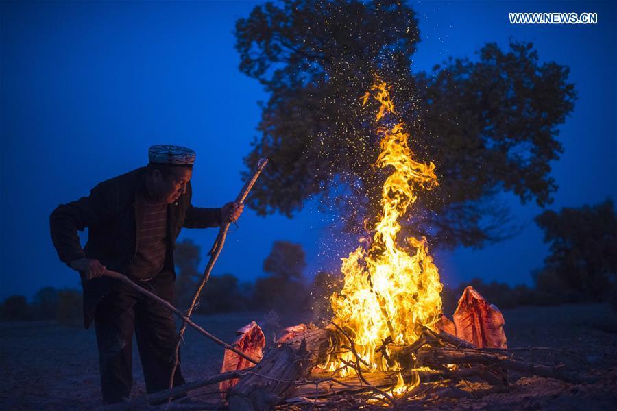 A villager bakes fish in Bachu County, northwest China's Xinjiang Uygur Autonomous Region, Nov. 5, 2017. (Xinhua/Jiang Wenyao)<br/>