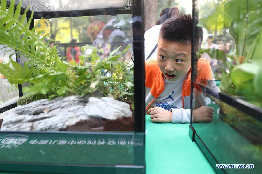 CHINA-BEIJING-INSECT-FAIR (CN)