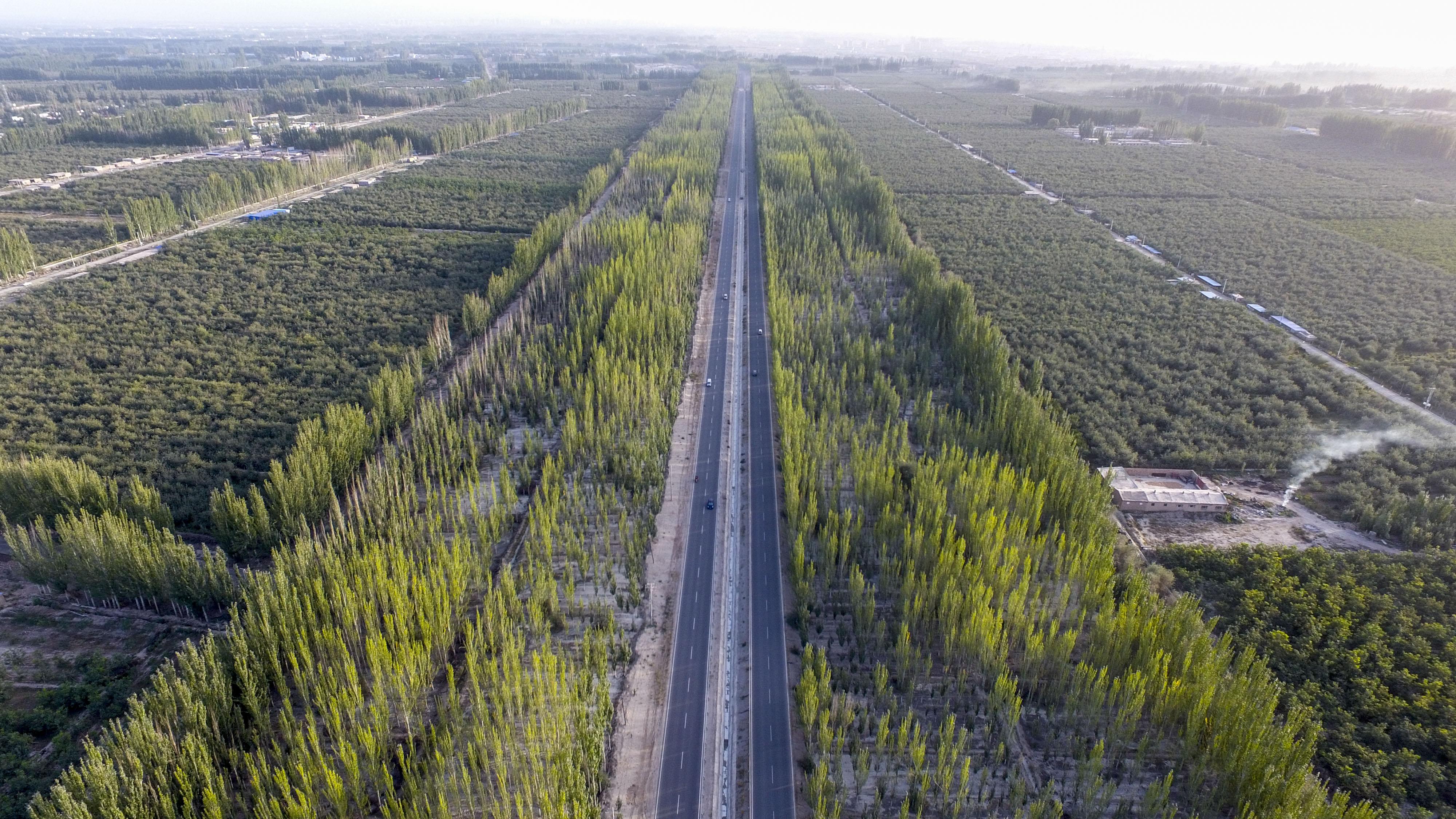 "Xinhua Headlines: Man-made oasis: Xinjiang's ""green wall"" fights expanding desert - Xinhua"