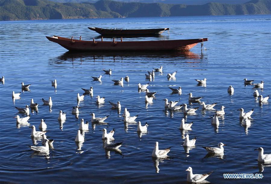 CHINA-YUNNAN-LUGU LAKE-SCENERY (CN)