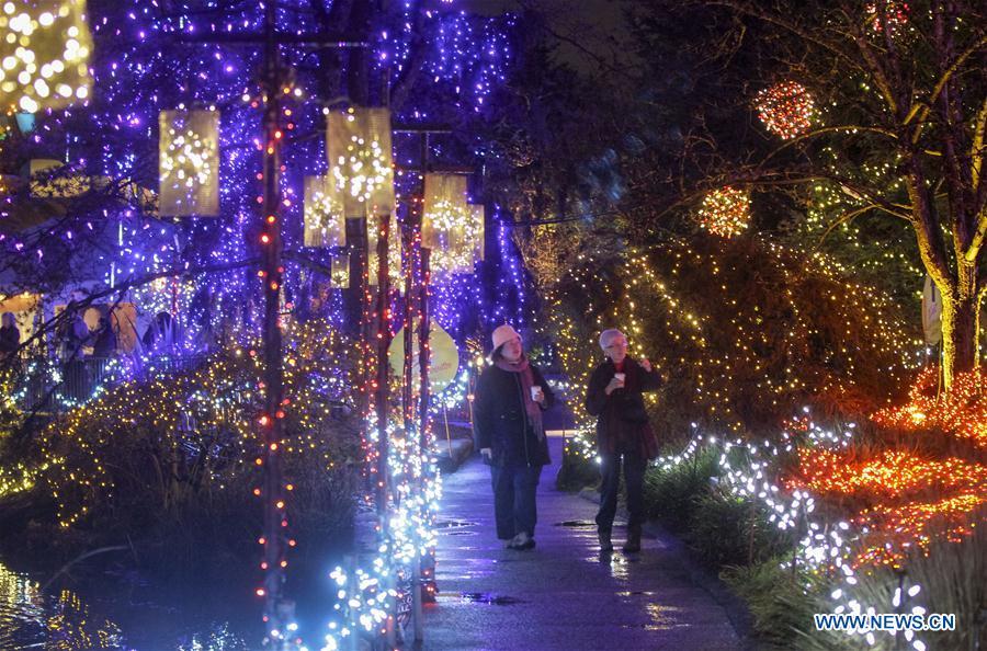 Vancouver Christmas Lights.Light Decorations Blanket Vancouver S Botanical Garden As