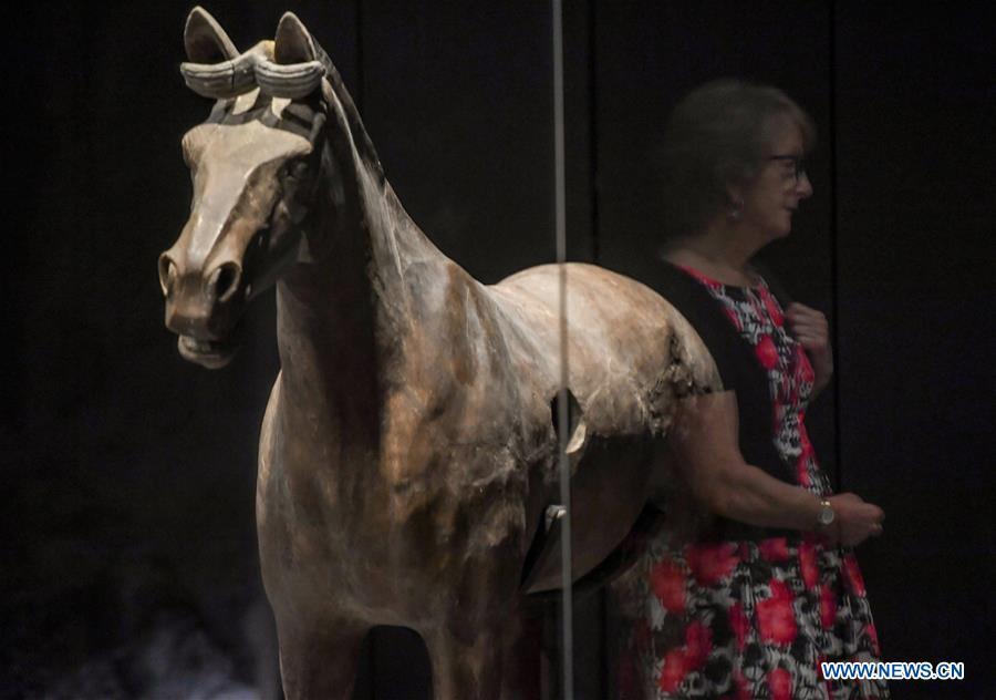 """展览""""兵马俑:不朽的守护者""""在新西兰首"""