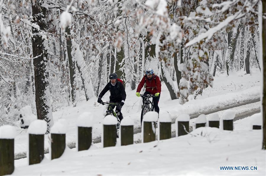塞尔维亚的贝尔格莱德被雪覆盖着