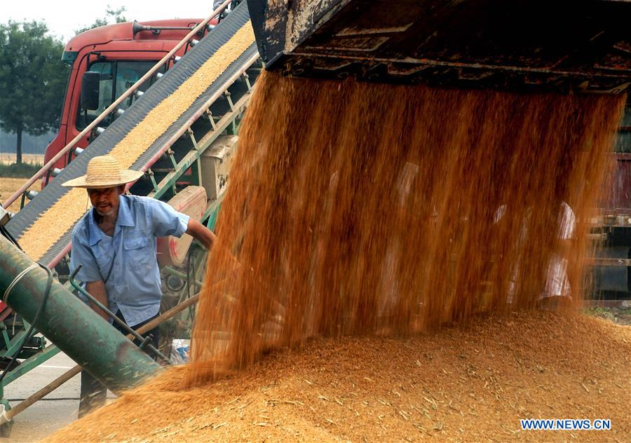 CHINA-AGRICULTURE-MECHANIZATION RATE (CN)