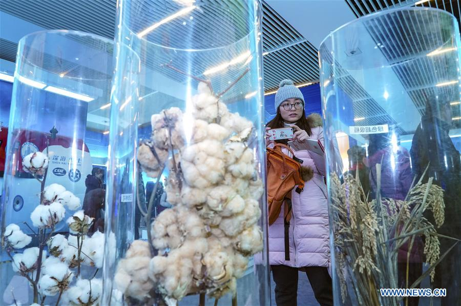 中国 - 北京 - 改革和开放 - 展览(CN)