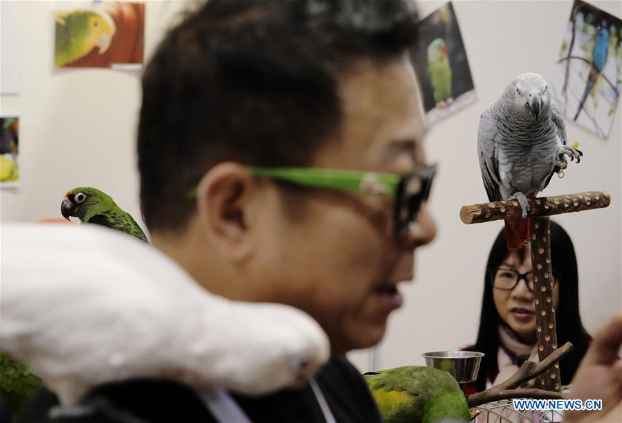 Two-day exhibition for pets, pet goods kicks off in Hong