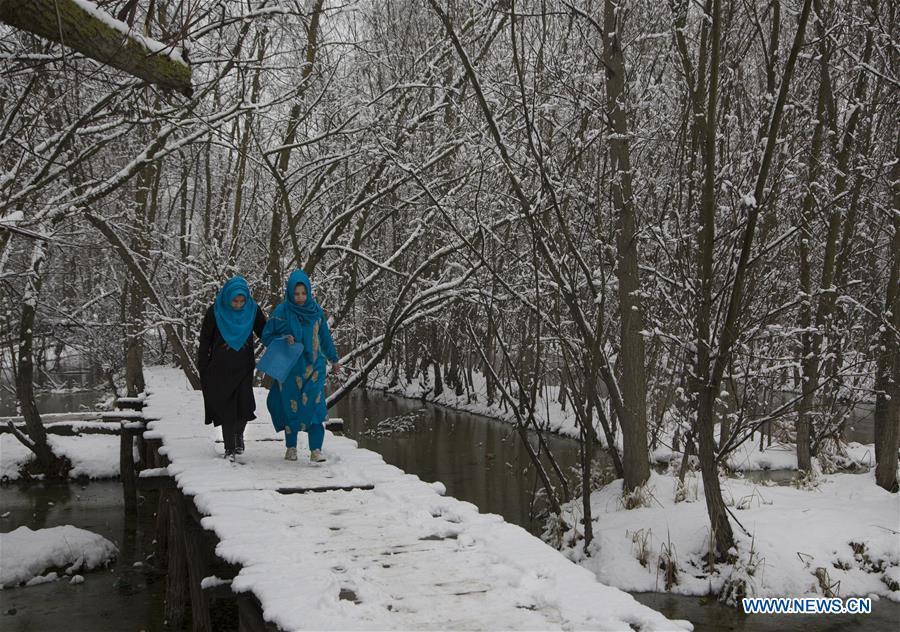 KASHMIR  - 斯利那加,降雪