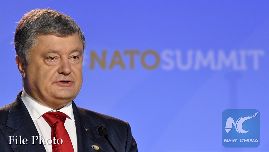 Ukraine to bid for EU membership, launch campaign to join NATO in 2024: president
