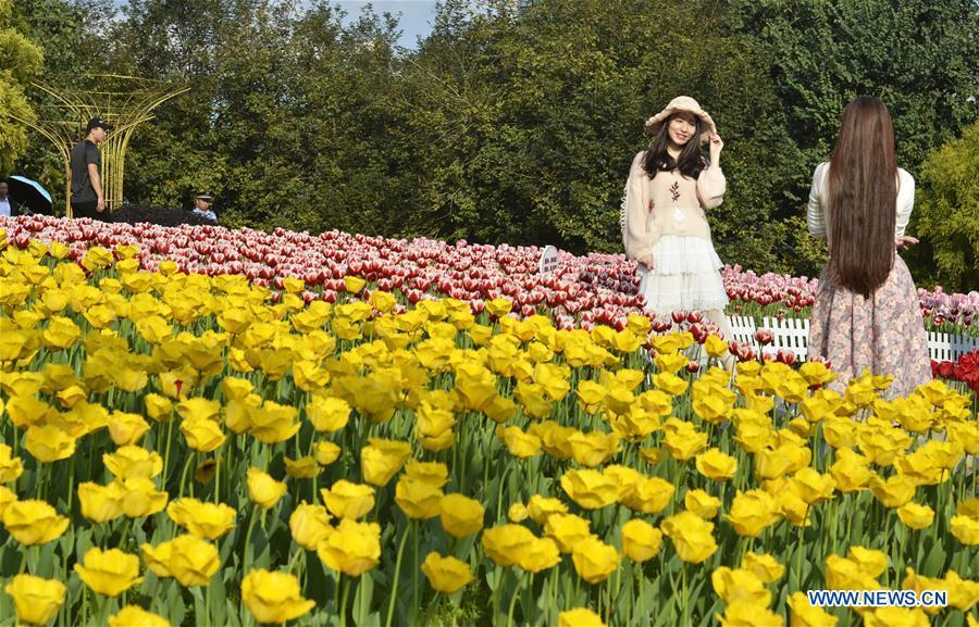 #CHINA-SPRING FESTIVAL-BLOSSOM (CN)