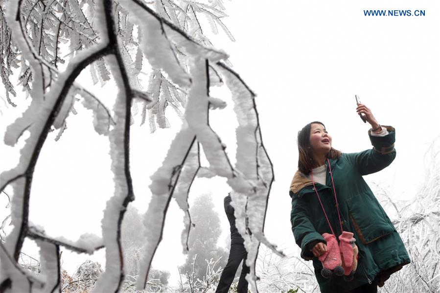 CHINA-HUNAN-SHUANGFENG-RIME ICE (CN)