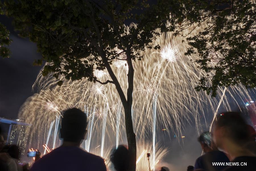 新加坡 - 烟花表演新年
