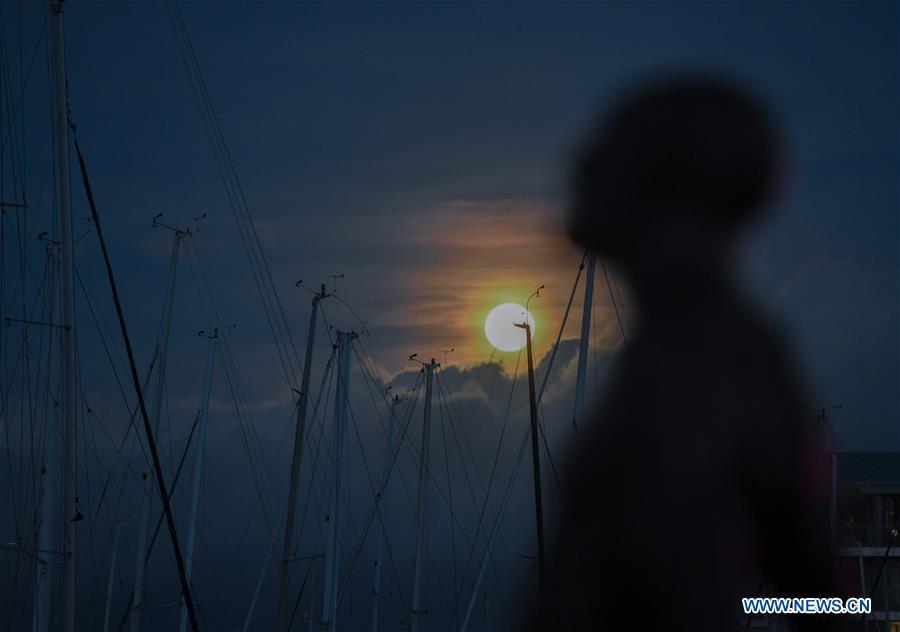 新西兰 - 惠灵顿 - 满月