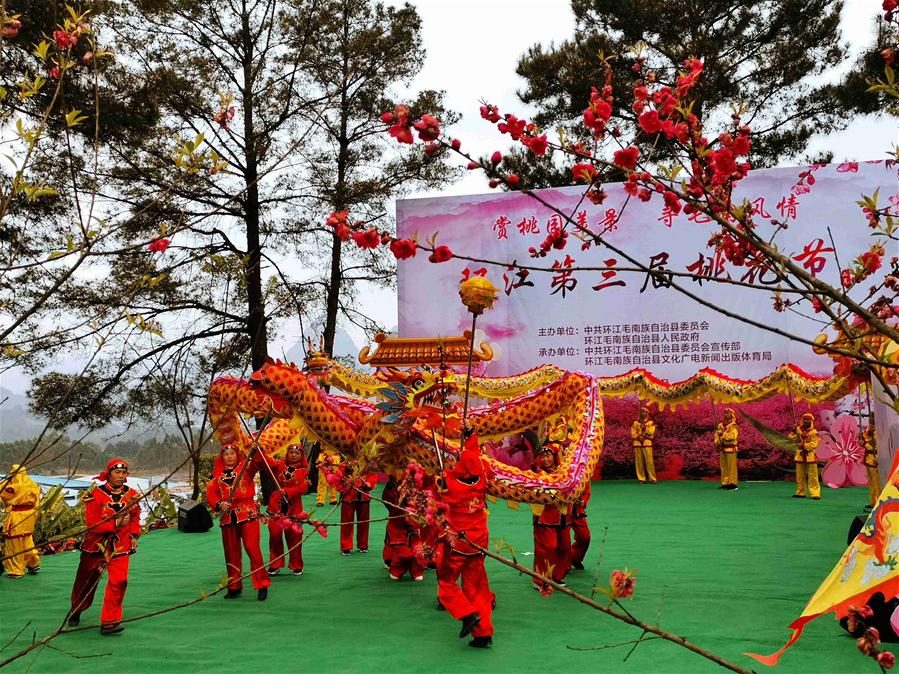 #CHINA-GUANGXI-HUANJIANG-PEACH BLOSSOM FESTIVAL (CN)