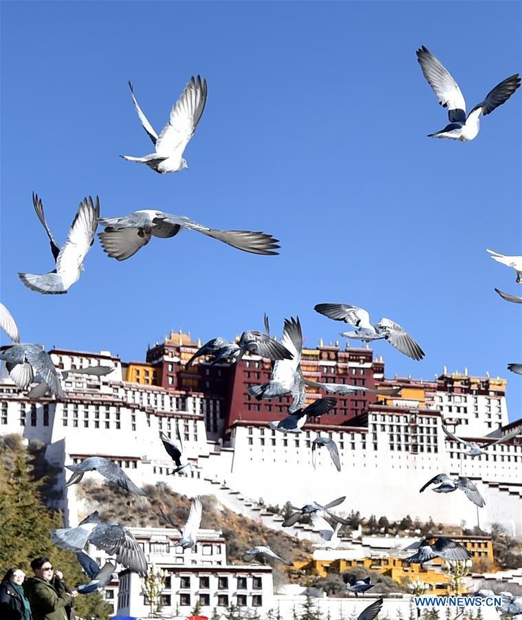 CHINA-LHASA-SPRING(CN)
