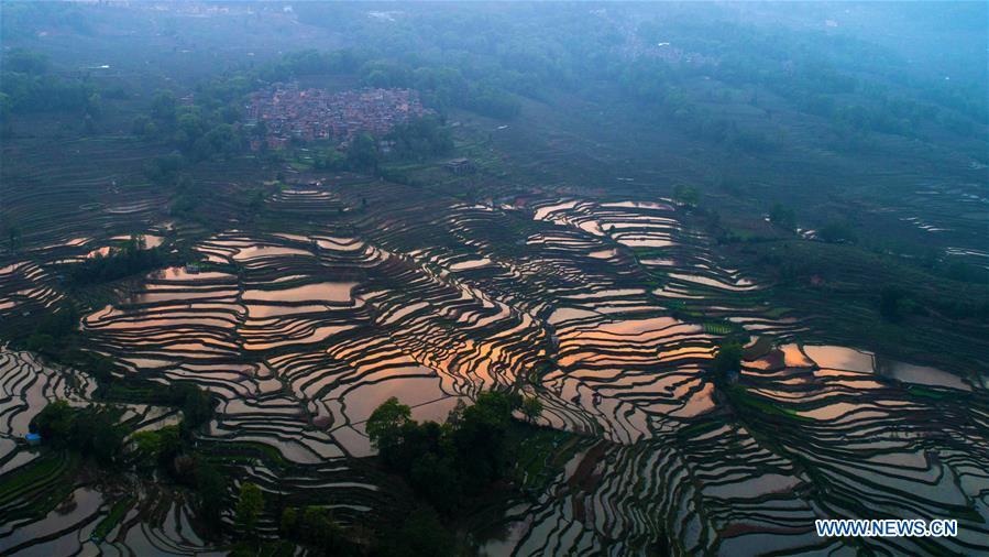 CHINA-YUNNAN-HANI TERRACED FIELDS-VIEWS (CN)