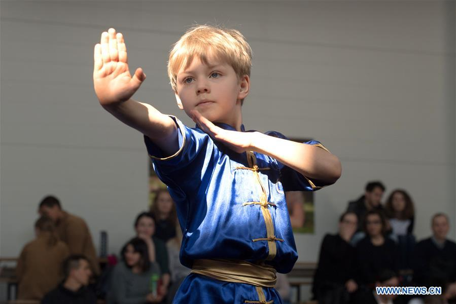 Athlete perform at Fifth Lithuanian Open Wushu Championship