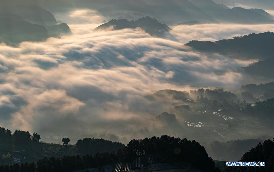 #CHINA-CHONGQING-WEATHER-FOG (CN)