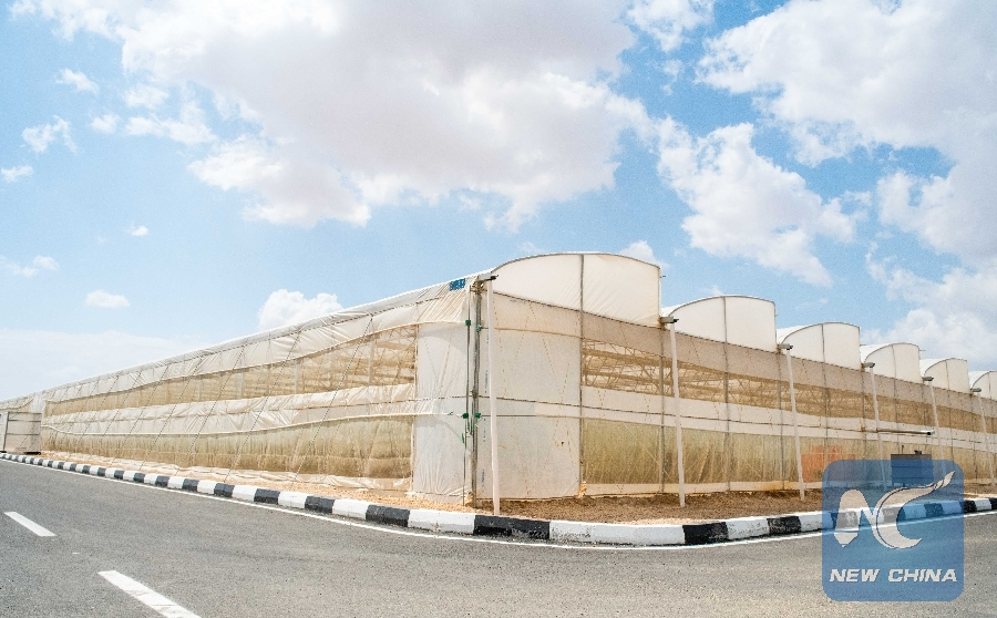 Pleasing Feature Chinas Greenhouse Technologies Turn Egypts Desert Home Interior And Landscaping Oversignezvosmurscom
