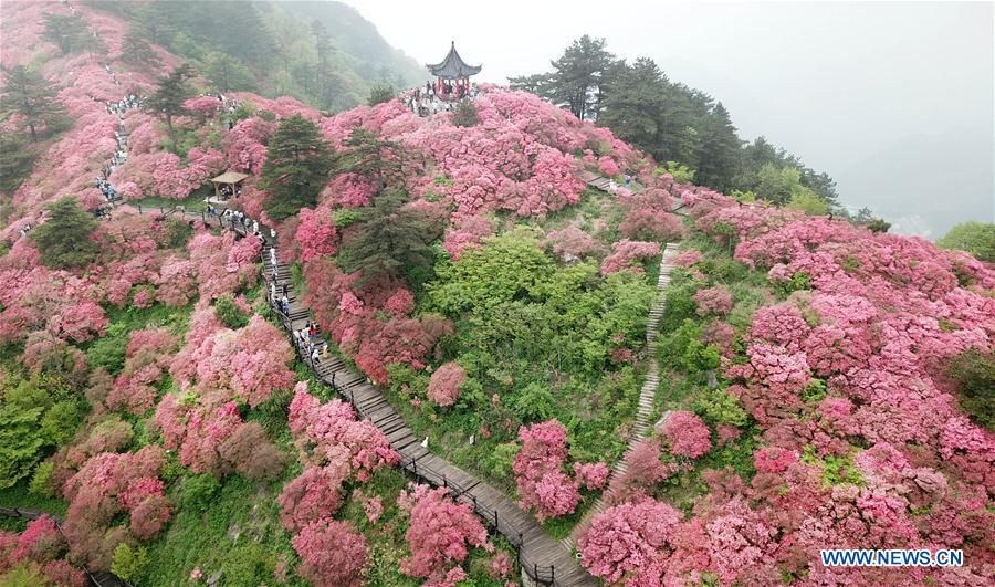 CHINA-HUBEI-WUHAN-SCENERY (CN)