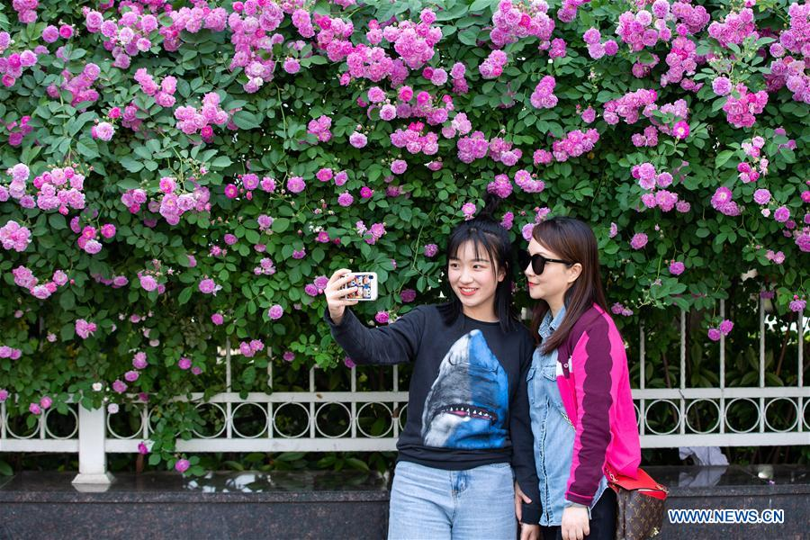 #CHINA-SPRING SCENERY-FLOWERS(CN)