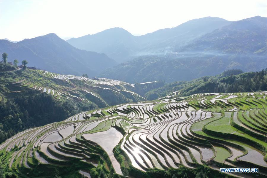 #CHINA-GUIZHOU-TERRACED FIELDS (CN)