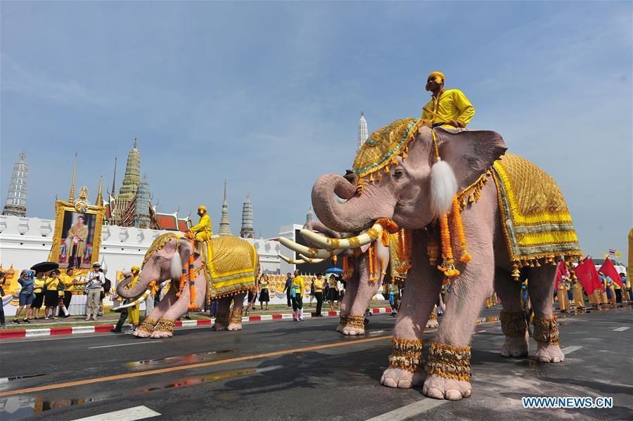 泰国曼谷加冕,大象,PARADE