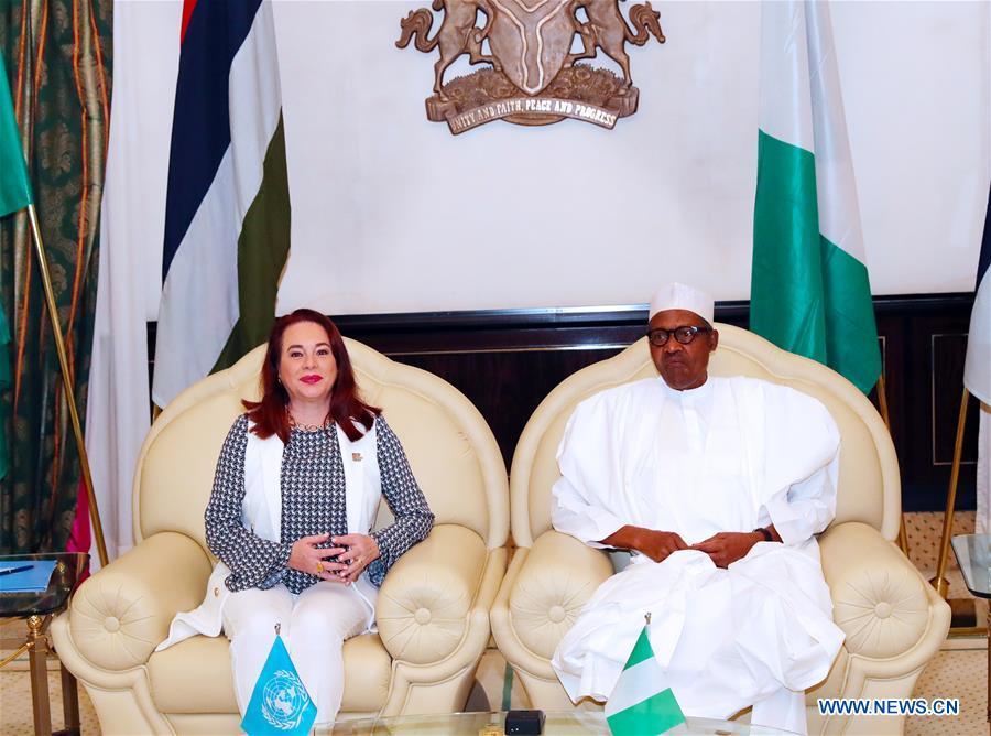 尼日利亚阿布贾 - 联合国大会,总统-VISIT