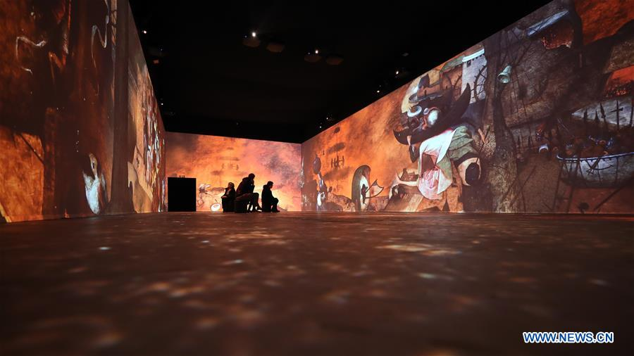 比利时 - 布鲁塞尔 - 布鲁吉尔 - 浸没式展览