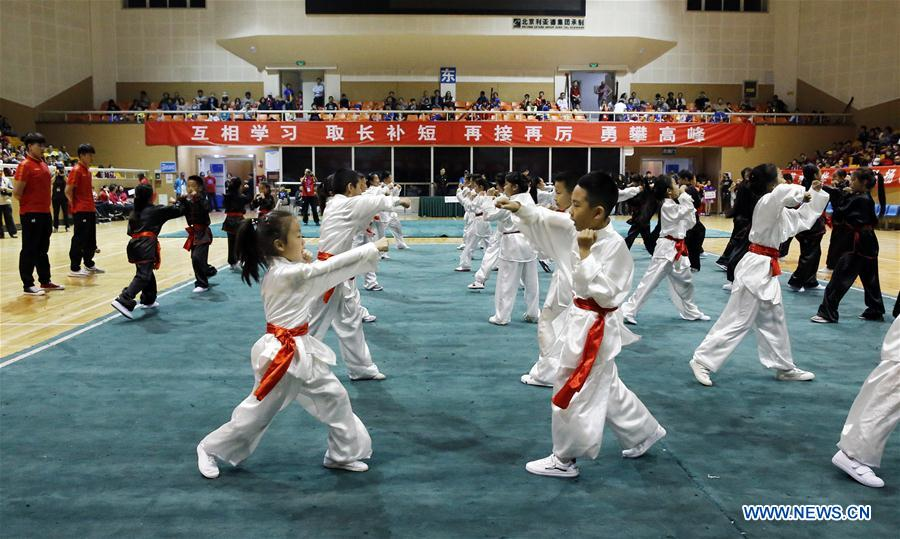 Wushu competition held in Ditan stadium, Beijing - Xinhua | English