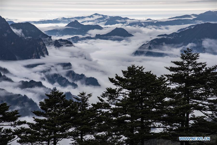 CHINA-HUBEI-SHENNONGJIA-SCENERY (CN)
