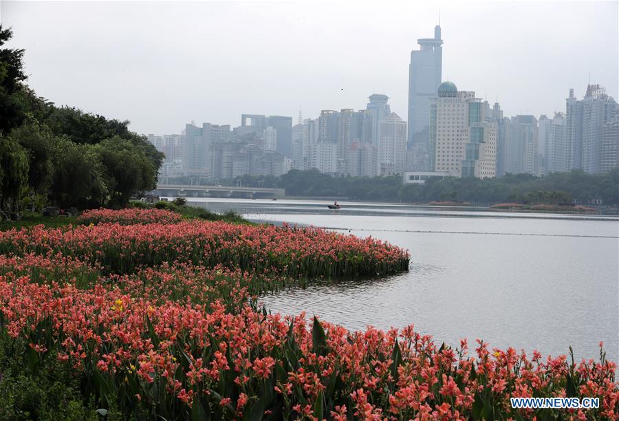 CHINA-NANNING-SCENERY (CN)