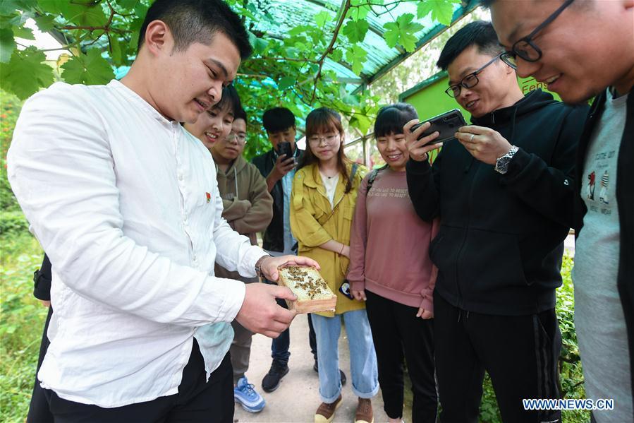 CHINA-AGRICULTURE-RURAL DEVELOPMENT (CN)