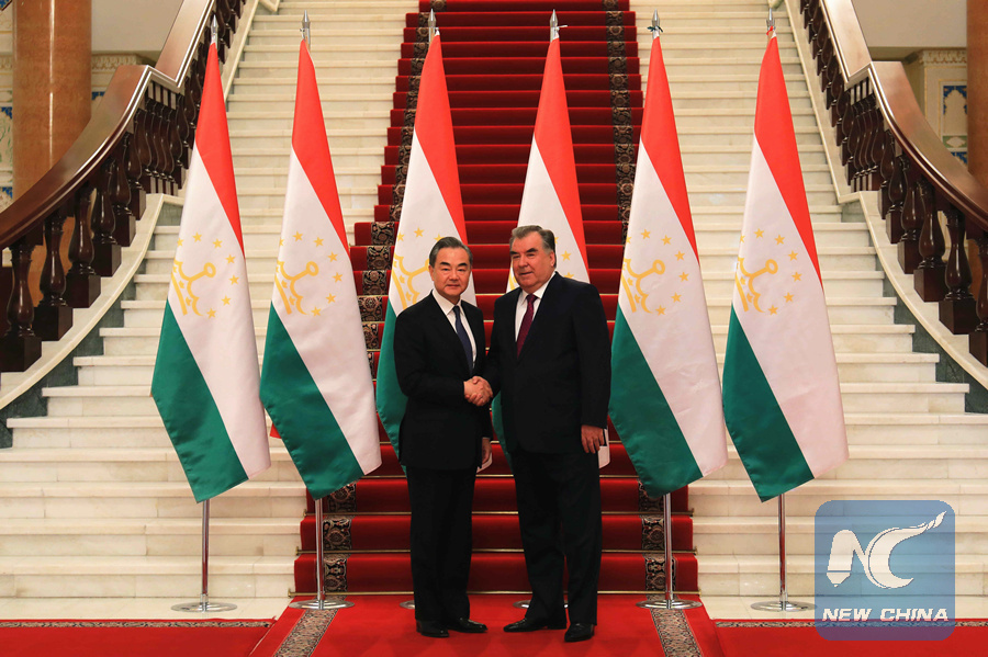 China, Tajikistan should work together to build community of shared future for mankind: Chinese FM