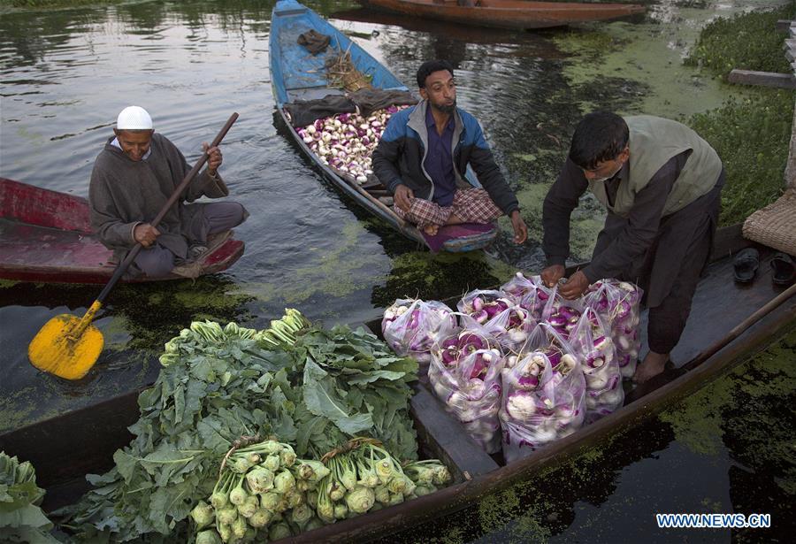 KASHMIR-SRINAGAR-FLOATING蔬菜市场