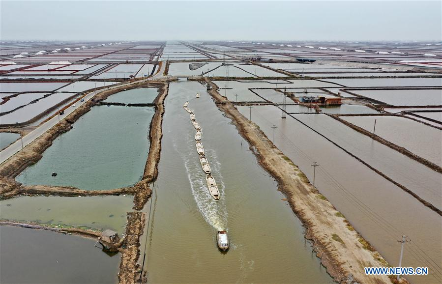 CHINA-HEBEI-CAOFEIDIAN-SEA SALT-HARVEST (CN)