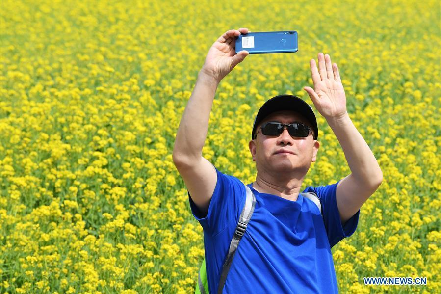 CHINA-Shanxi-TAIYUAN-COLE FLOWERS(CN)