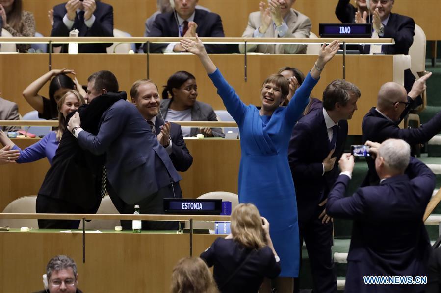 联合国大会 - 新的安全理事会成员