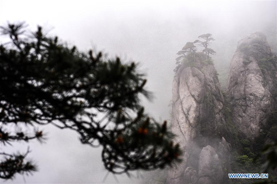 (EcoChina)CHINA-BEIJING-HORTICULTURAL EXPO-JIANGXI (CN)